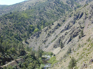 Shasta Río