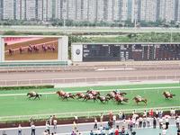 Hipódromo de Sha Tin