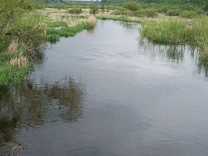 Shell Río