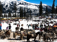 Shimla Manali Taxi Package 5 Nights And 6 Days