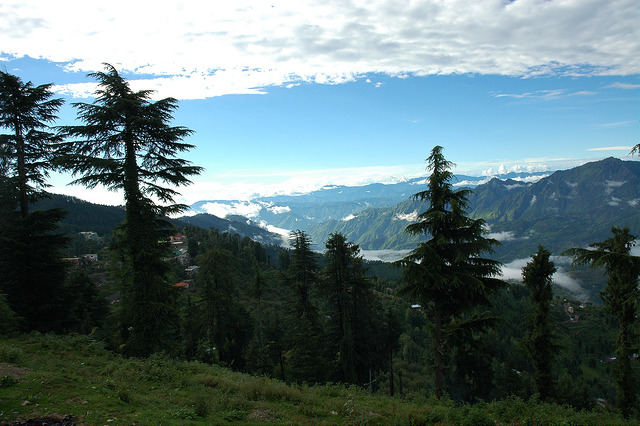 Shimla Manali Honeymoon Tour Photos