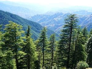 Himachal Delight Package Fotos
