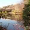 Pond Of Shin-Edogawa Garden