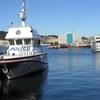 Ships @ Wellington Harbour NZ