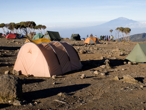 Shira Route 8 Days Kilimanjaro Climb