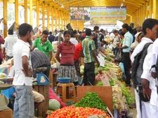 Shopping At Pettah Market