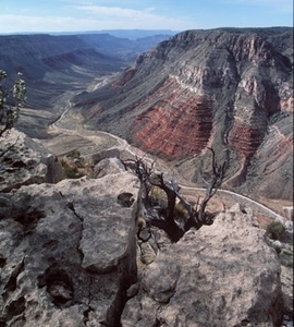 Side Canyon In The National Monument
