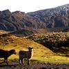 Sierra Nevada Del Cocuy National Park