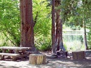 Sierra Lago Ward Campground