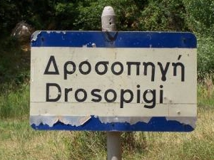 Drosopigi
