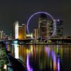 Singapore Flyer - Downtown