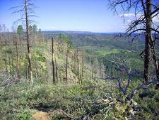 Sinkhole Trail 179 - Tonto National Forest - Arizona - USA
