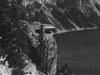 Sinnott Memorial Observation Station