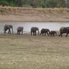 Sioma Ngwezi Parque Nacional