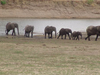 Sioma Ngwezi National Park