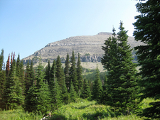 Siyeh Pass Trail View At Glacier - Montana - USA