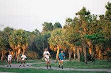 Skaters In Fort De Soto Park
