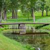 Small Bridge In The English Garden