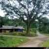 SNDP Temple, Kunchithanny