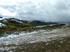 Snow & Aspen