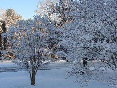Snow In  Rock  Hill