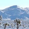 Snow In Yucca Valley