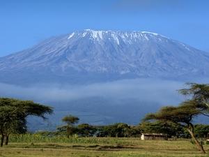 Tanzania Explorer - 12 Days Photos