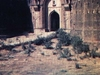 Sohail Gate