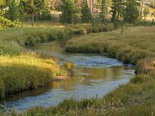 Solfatara Creek Trail - Yellowstone - USA