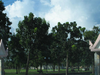 Somdet Phra Sri Nagarindra Park