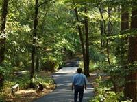 South Arkansas Arboretum