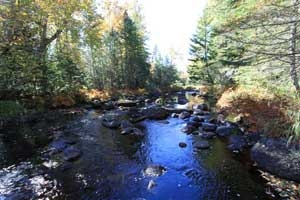 South Branch Machias River Maine