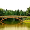 Sur de China Botanical Garden