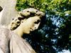 Southern Cemetery  Chorlton