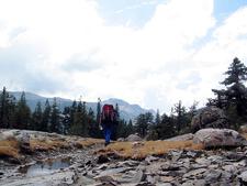 South Fork Cascade Canyon Trailviews - Grand Tetons - Wyoming - USA
