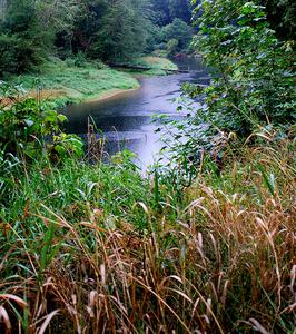 South Fork Coos River
