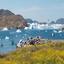 Sul da Groenlândia