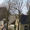 Spaarnwoude Village