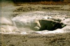 Spasmodic Geyser - Yellowstone - USA