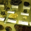 Specimens In Rice NW Museum - Hillsboro OR
