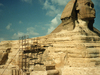 Sphinx With Scaffolding At Giza