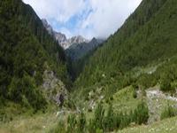 Spirkenwald Forest