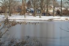 Springfield Lake In Springfield Park