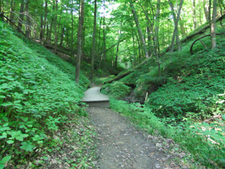 Spring Hollow Trail