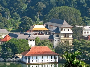 Kandy,Nuwara & Colombo with Dinners