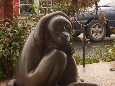 The Brass Monkey