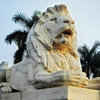 Statue Of Lion Outside Victoria Memorial