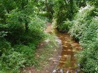 Steep Brook Hill