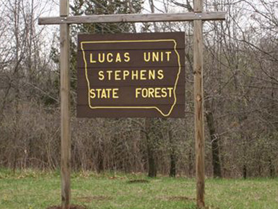 Stephens State Forest