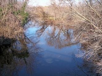 St. Jones River